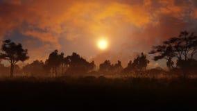 Деревня в вечере Стоковое Фото