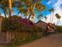 Деревня в песке Стоковая Фотография RF