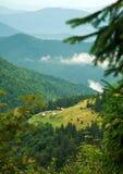 Деревня на горном склоне окруженном зелеными лесами Стоковые Изображения RF