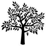 Дерево вектора Стоковые Изображения