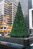 Дерево в фонтане Стоковая Фотография RF