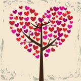 Дерево влюбленности Стоковая Фотография