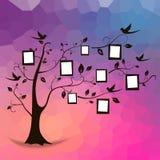 Дерево и фото Стоковые Изображения