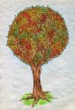 Дерево осени Стоковое Изображение RF