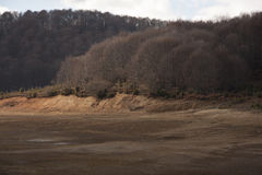 Деревья осени в Mavrovo Стоковое Фото