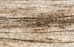 Деревянная выдержанная стена Стоковое Изображение