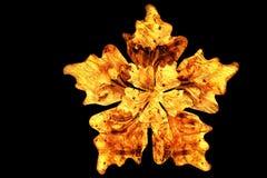 Деревянная иллюстрация цветка 3d Стоковое Фото