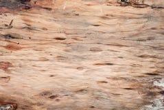 Деревянная предпосылка текстуры старая Стоковые Изображения RF