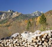 Деревянный вносит дальше осень в журнал Стоковое Изображение RF