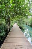 Деревянный мост Стоковые Фото
