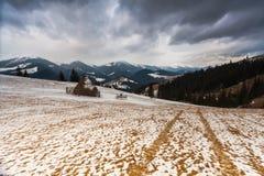 Деревянный дом в пуще зимы Стоковые Изображения RF