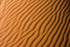 деталь Сахара пустыни Стоковое фото RF