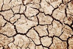 Деталь высушенной почвы Стоковая Фотография RF