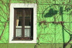 Деталь дома Стоковое Изображение RF