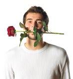 детеныши розы человека Стоковая Фотография
