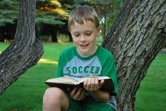 детеныши чтения мальчика Стоковое Фото