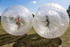 Дети имеют потеху в шарике Zorbing Стоковые Фото