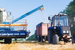 Деятельность жатки зернокомбайна Стоковая Фотография RF