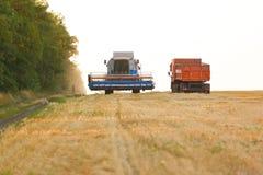 Деятельность жатки зернокомбайна Стоковые Изображения RF