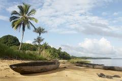 джунгли пляжа Стоковая Фотография
