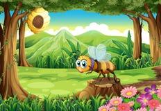 Джунгли с пчелой около улья Стоковые Изображения RF