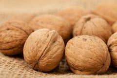 джут кладя грецкие орехи Стоковые Изображения