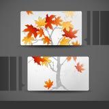 Дизайн визитной карточки Стоковое Изображение RF