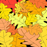 Дизайн листвы осени Стоковое Изображение RF