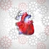 Дизайн конспекта анатомии сердца Стоковое фото RF