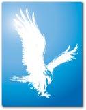 Дизайн Clipart вектора силуэта орла летания Стоковое Изображение