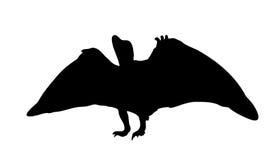 Динозавр силуэта. Черная иллюстрация вектора. Стоковые Изображения