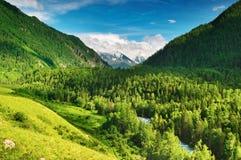 долина горы Стоковое Фото
