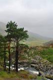 долина welsh Стоковое Изображение