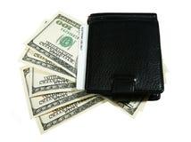 доллары бумажника Стоковое Фото