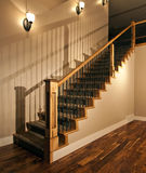 домашний новый stairway Стоковое фото RF
