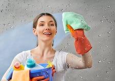 Домохозяйка Стоковое Фото