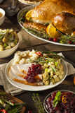 Домодельное благодарение Турция на плите Стоковые Фото