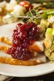 Домодельное благодарение Турция на плите Стоковое Изображение