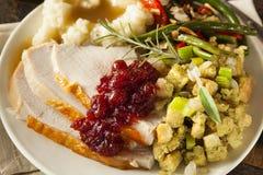 Домодельное благодарение Турция на плите Стоковое Изображение RF