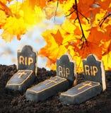 Домодельные печенья хеллоуина и выбор помадок Стоковое Изображение RF