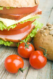 Домодельный гамбургер с свежими овощами Стоковое Фото