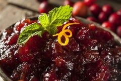 Домодельный красный соус клюквы Стоковая Фотография