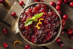 Домодельный красный соус клюквы Стоковые Фото