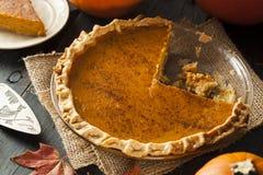 Домодельный пирог тыквы для Thanksigiving Стоковое Фото