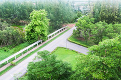 Дорога асфальта в лесе Стоковое фото RF