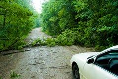 дорога блока Стоковые Фотографии RF