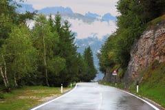 дорога влажная Стоковая Фотография RF