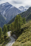 Дорога в горах Стоковая Фотография