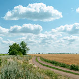 Дорога в поле и облака над им Стоковое фото RF