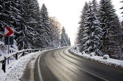 Дорога зимы Стоковые Фото